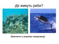 Де живуть риби? (Виключно у водному середовищі)