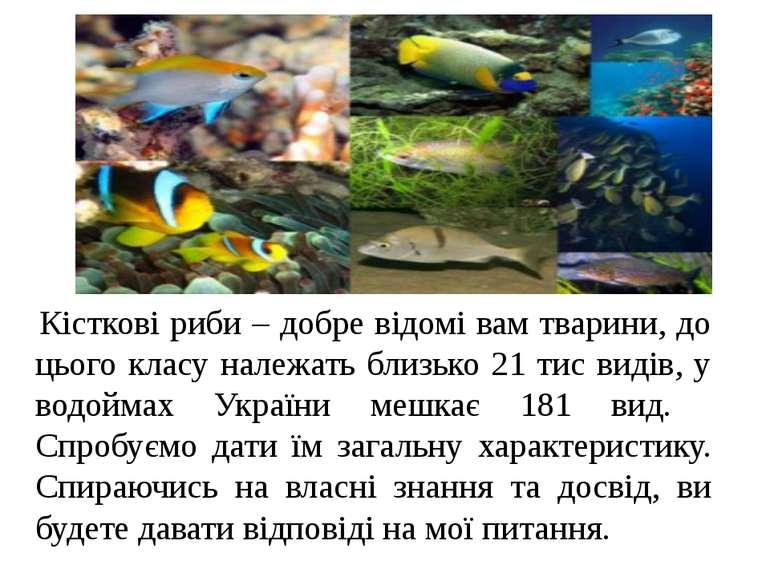 Кісткові риби – добре відомі вам тварини, до цього класу належать близько 21 ...