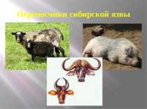Переносчики сибирской язвы