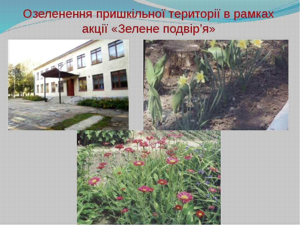 Озеленення пришкільної території в рамках акції «Зелене подвір'я»