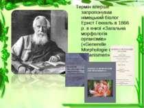 Термін вперше запропонував німецький біолог Ернст Геккель в 1866 р. в книзі «...