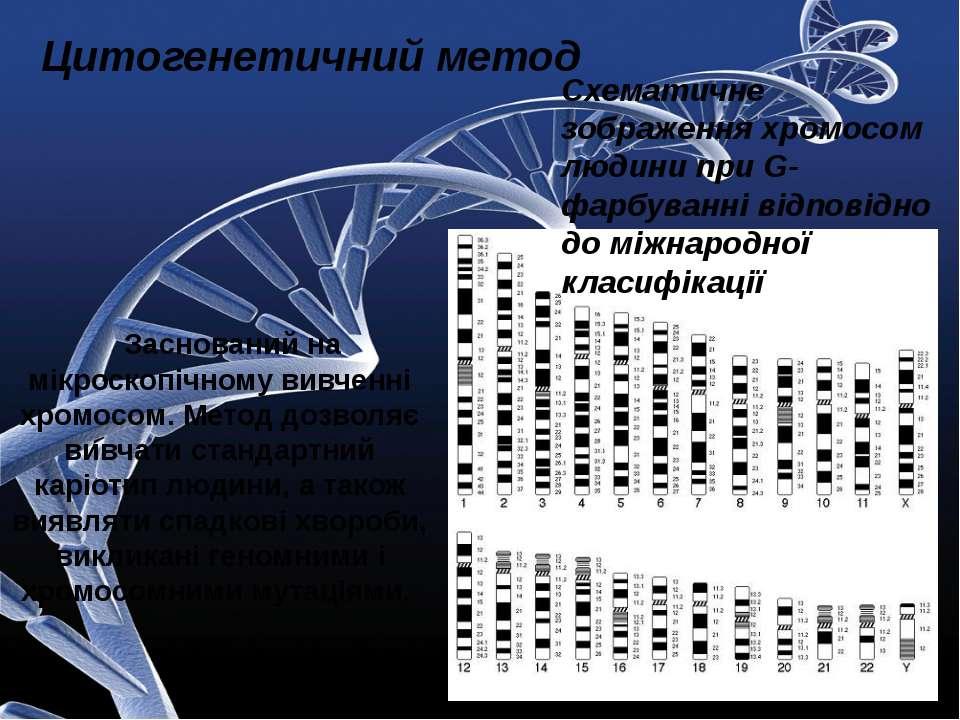 Заснований на мікроскопічному вивченні хромосом. Метод дозволяє вивчати станд...