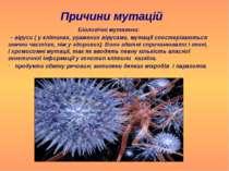 Причини мутацій Біологічні мутагени: – віруси ( у клітинах, уражених вірусами...