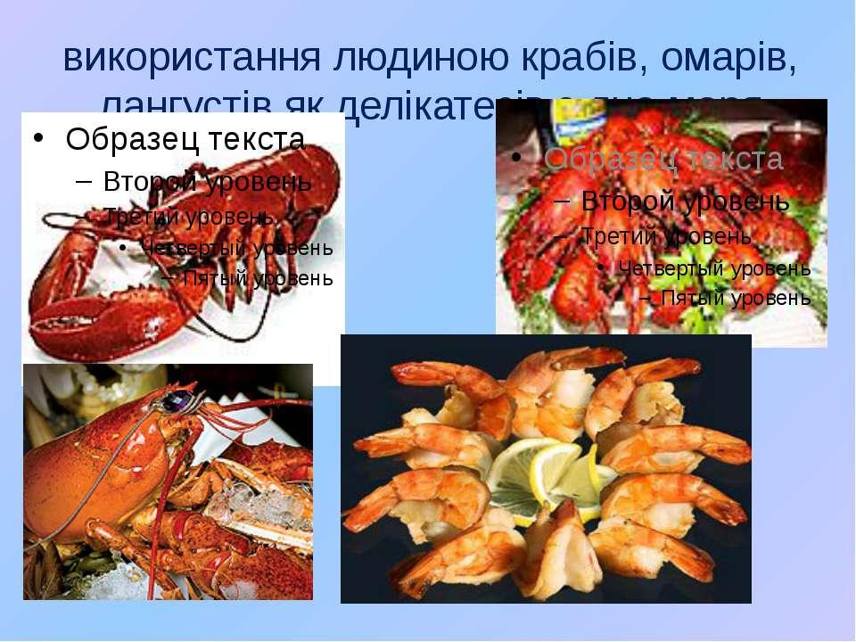використання людиною крабів, омарів, лангустів як делікатесів з дна моря