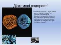 Діатомові водорості Діатомові водорості — відділ нижчих рослин. Налічує понад...