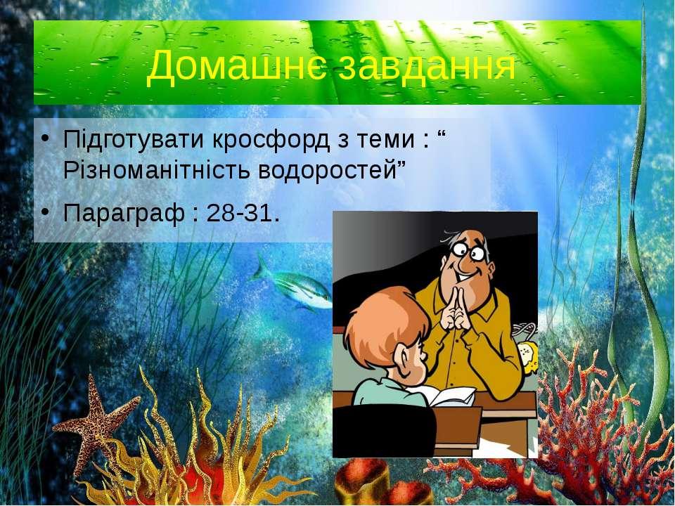 """Домашнє завдання Підготувати кросфорд з теми : """" Різноманітність водоростей"""" ..."""