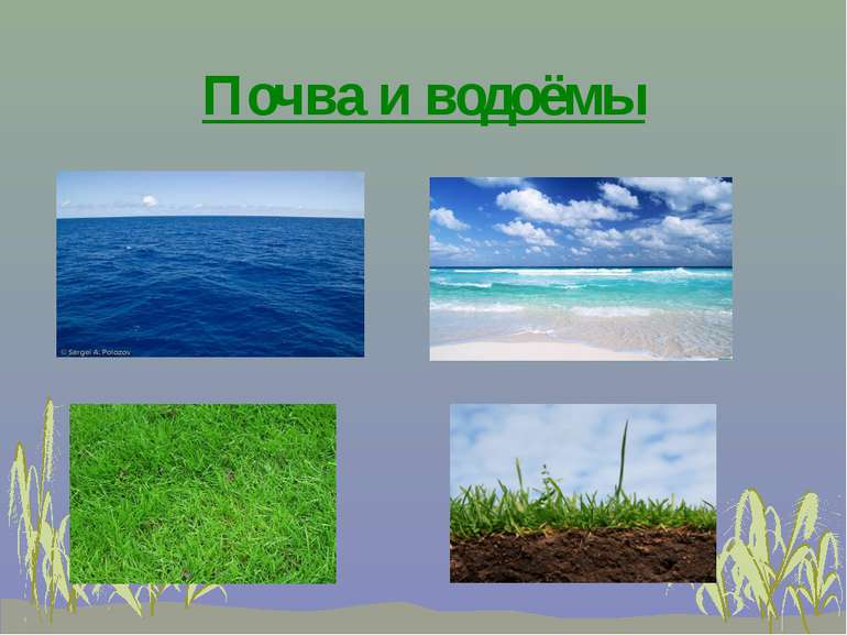 Почва и водоёмы
