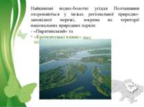 Найцінніші водно-болотні угіддя Полтавщини охороняються у межах регіональної ...