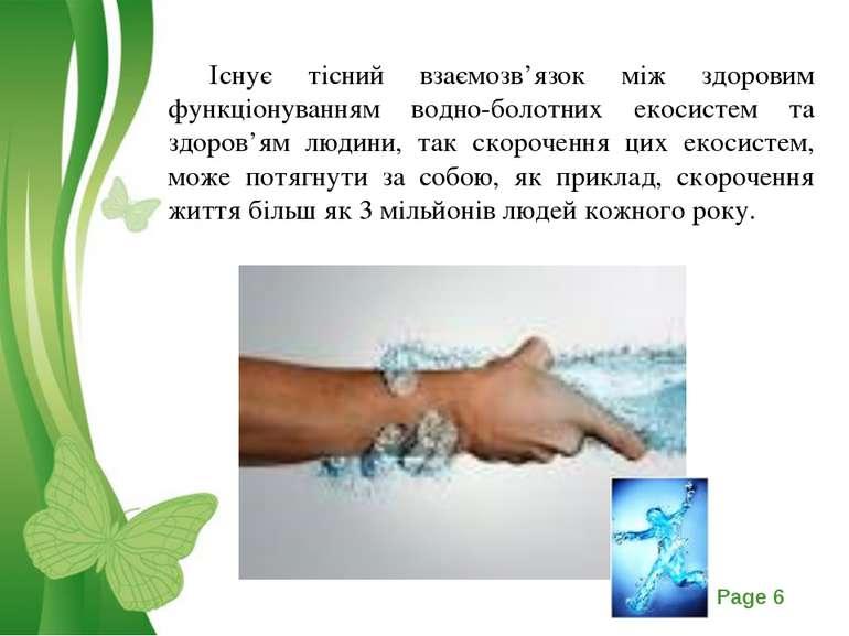 Існує тісний взаємозв'язок між здоровим функціонуванням водно-болотних екосис...