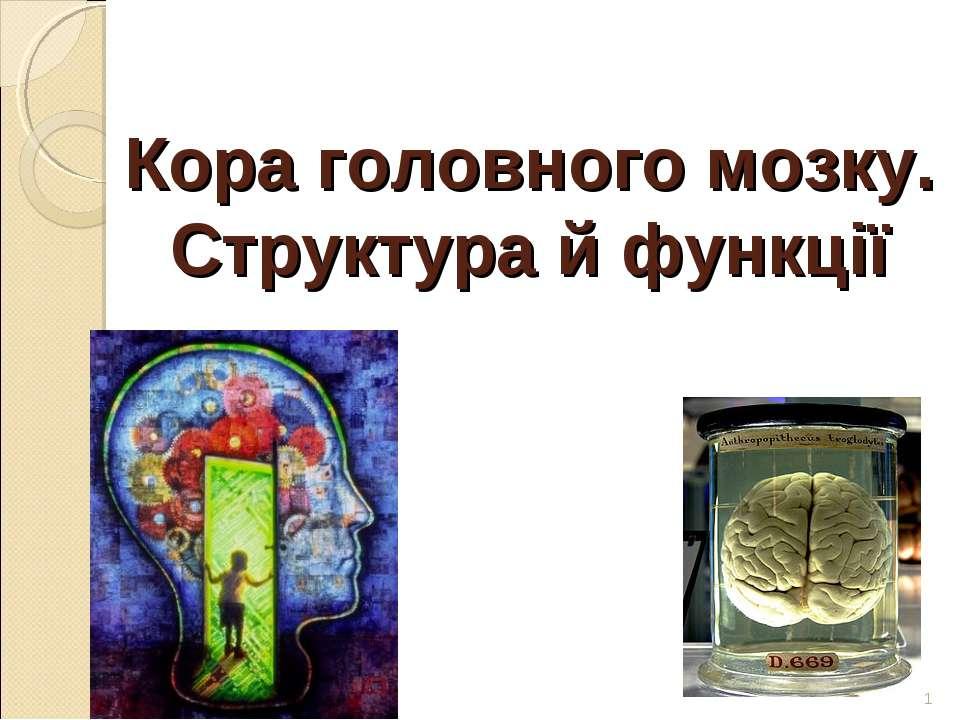 Кора головного мозку. Структура й функції *