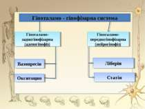 Гіпоталамо - гіпофізарна система Гіпоталамо-заднєгіпофізарна (аденогіпофіз) Г...