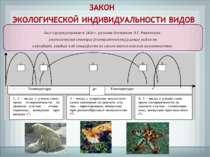 был сформулирован в 1924 г. русским ботаником Л.Г. Раменским: экологические с...