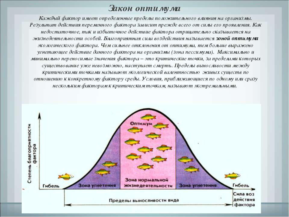 Закон оптимума Каждый фактор имеет определенные пределы положительного влияни...
