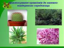 Пристосування організмів до наземно-повітряного середовища