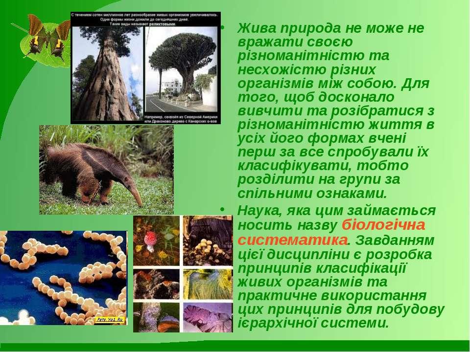 Жива природа не може не вражати своєю різноманітністю та несхожістю різних ор...
