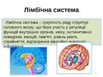 Лімбічна система *