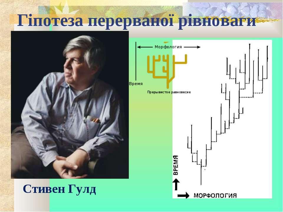 Гіпотеза перерваної рівноваги Стивен Гулд