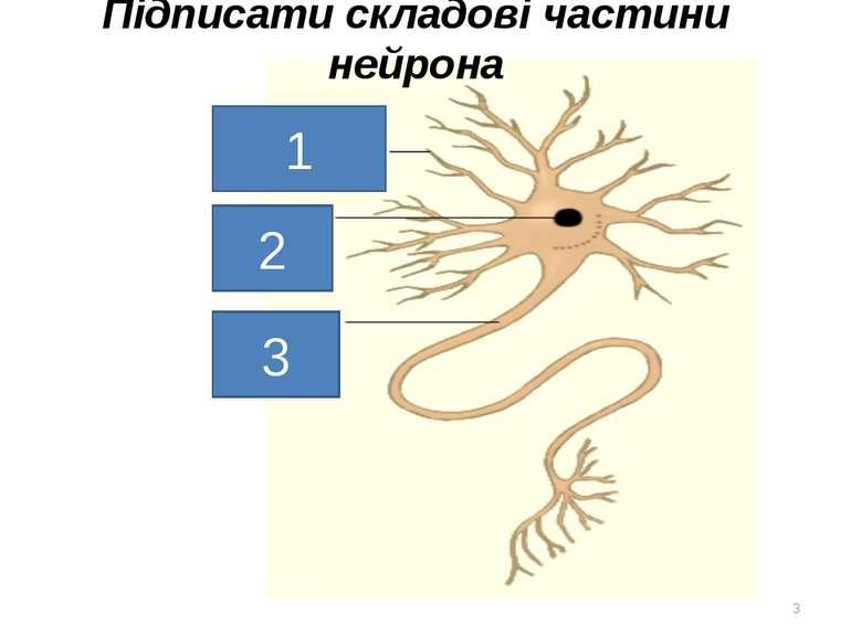 Підписати складові частини нейрона * 1 2 3