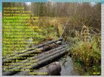 НАРОДЖЕННЯ Ніхто не знає і донині, Коли у пітьмі давніх літ Струмок в болотян...