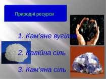Природні ресурси 1. Кам'яне вугілля 2. Калійна сіль 3. Кам'яна сіль