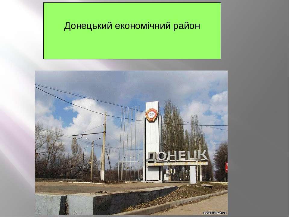 Донецький економічний район