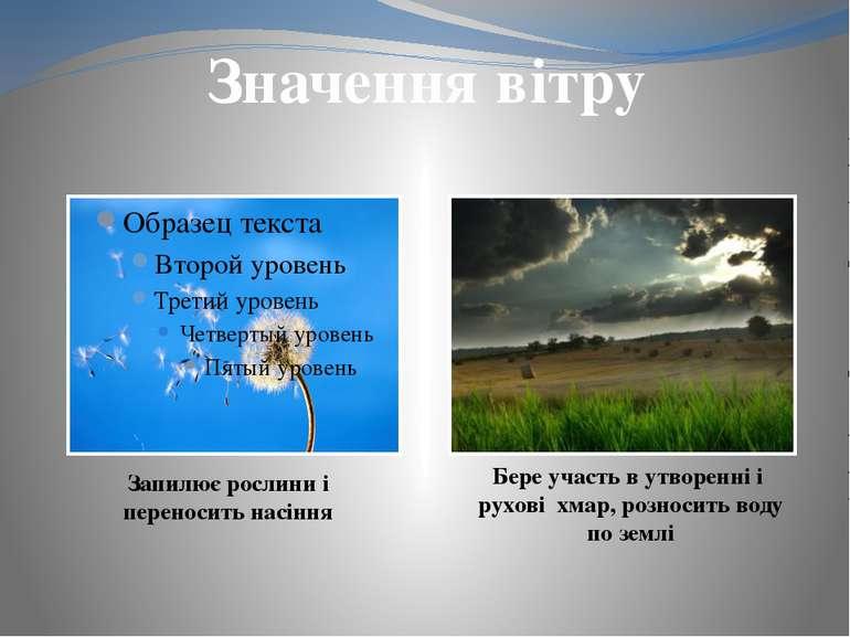 Виробляє електро-енергію Допомагає вітрякам молоти зерно