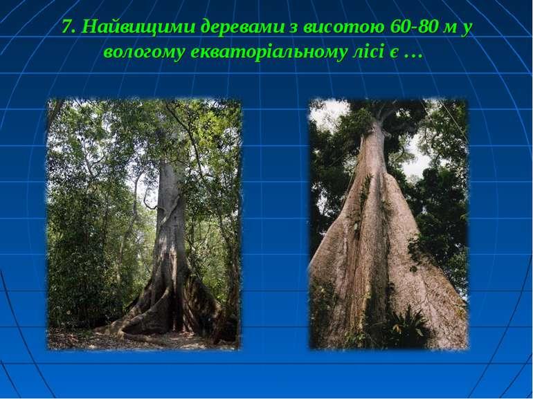 7. Найвищими деревами з висотою 60-80 м у вологому екваторіальному лісі є …