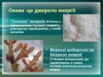 """Океан -це джерело енергії """"Солона"""" енергія (Роботи з перетворення """"солоної"""" е..."""