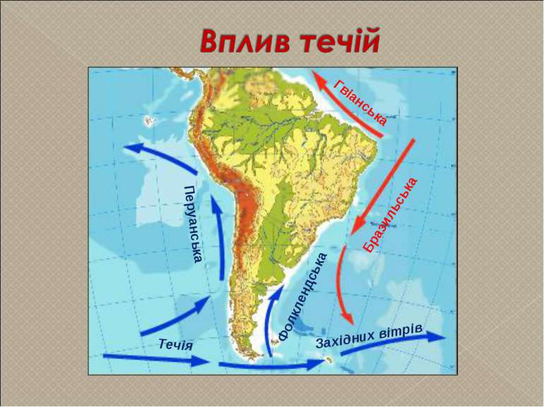 Бразильська Гвіанська Перуанська Західних вітрів Течія Фолклендська