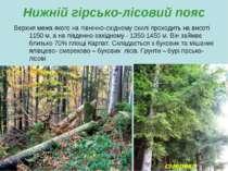 Нижній гірсько-лісовий пояс Верхня межа якого на північно-східному схилі прох...