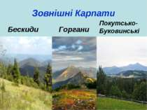 Зовнішні Карпати Горгани Бескиди Покутсько-Буковинські