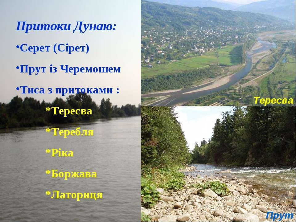 Притоки Дунаю: Серет (Сірет) Прут із Черемошем Тиса з притоками : *Тересва *Т...