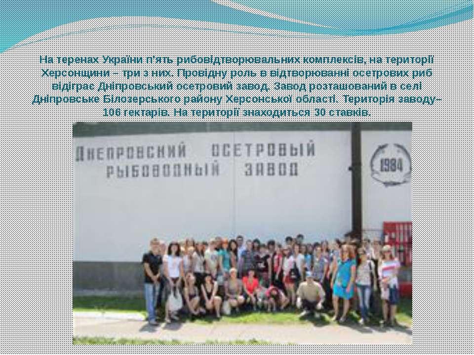 На теренах України п'ять рибовідтворювальних комплексів, на території Херсонщ...