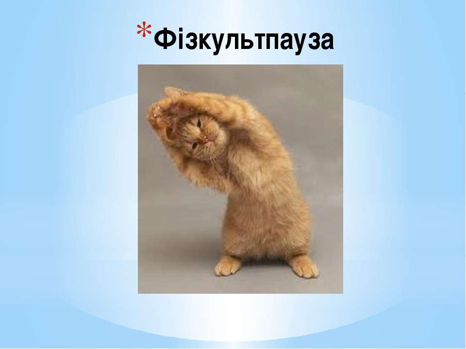 Фізкультпауза
