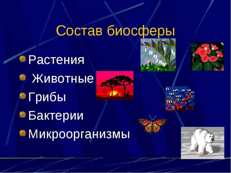 Состав биосферы Растения Животные Грибы Бактерии Микроорганизмы