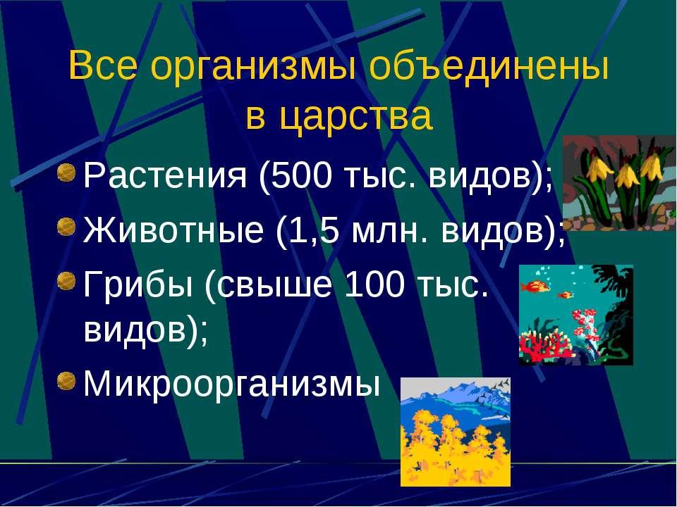Все организмы объединены в царства Растения (500 тыс. видов); Животные (1,5 м...