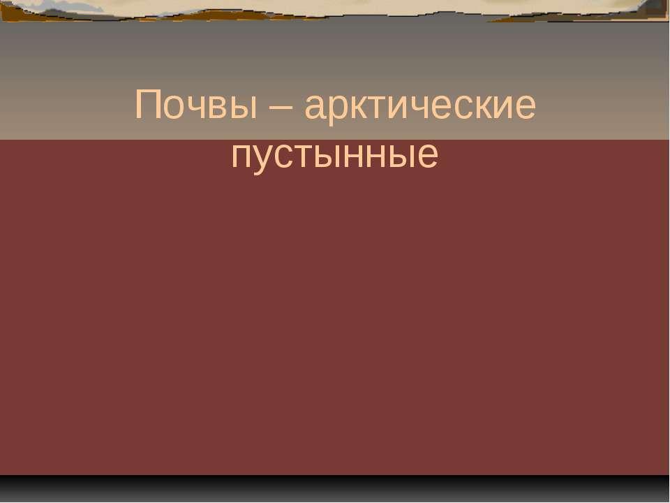 Почвы – арктические пустынные