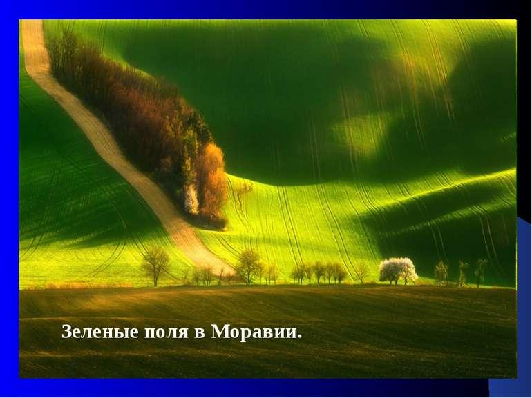 Зеленые поля в Моравии.