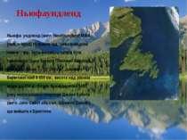 """Ньюфаундленд Ньюфа ундленд (англ. Newfoundland МФА: [nufənˈlænd] Нуфанле нд """"..."""