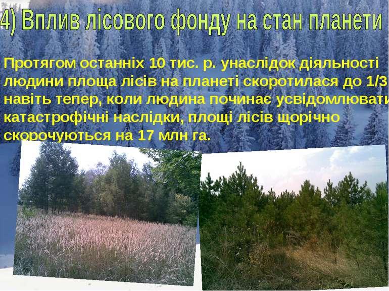 Протягом останніх 10 тис. р. унаслідок діяльності людини площа лісів на плане...