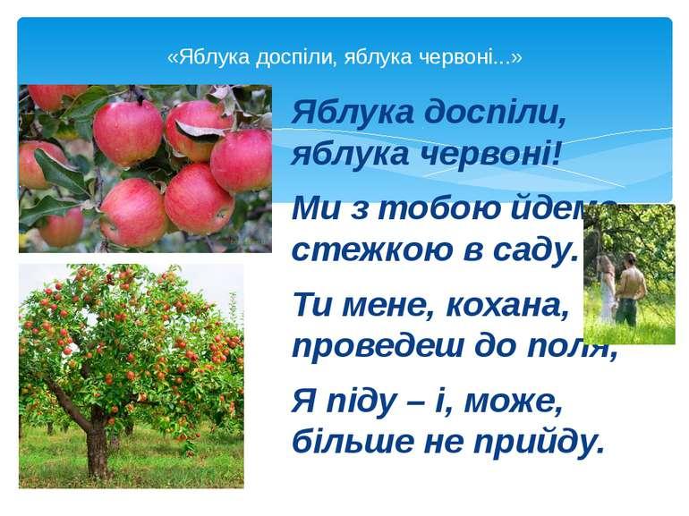 Яблука доспіли, яблука червоні! Ми з тобою йдемо стежкою в саду. Ти мене, кох...