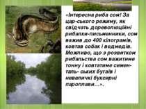 «Iнтересна риба сом! За цар ського режиму, як свiдчать дореволюцiйнi рибалки-...