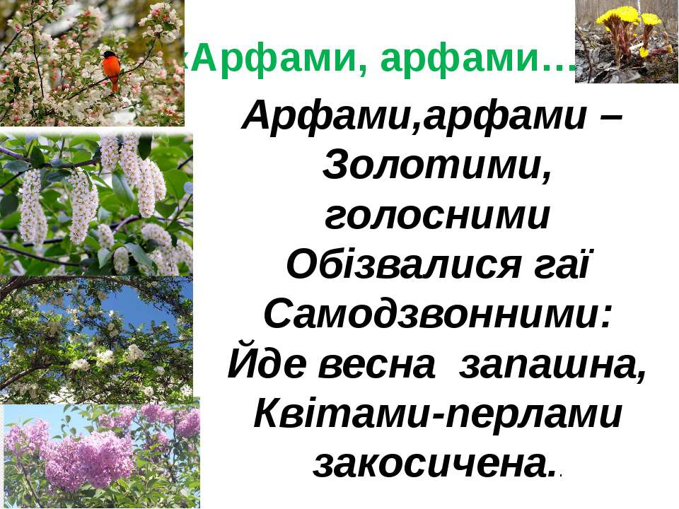 «Арфами, арфами…» Арфами,арфами – Золотими, голосними Обізвалися гаї Самодзво...