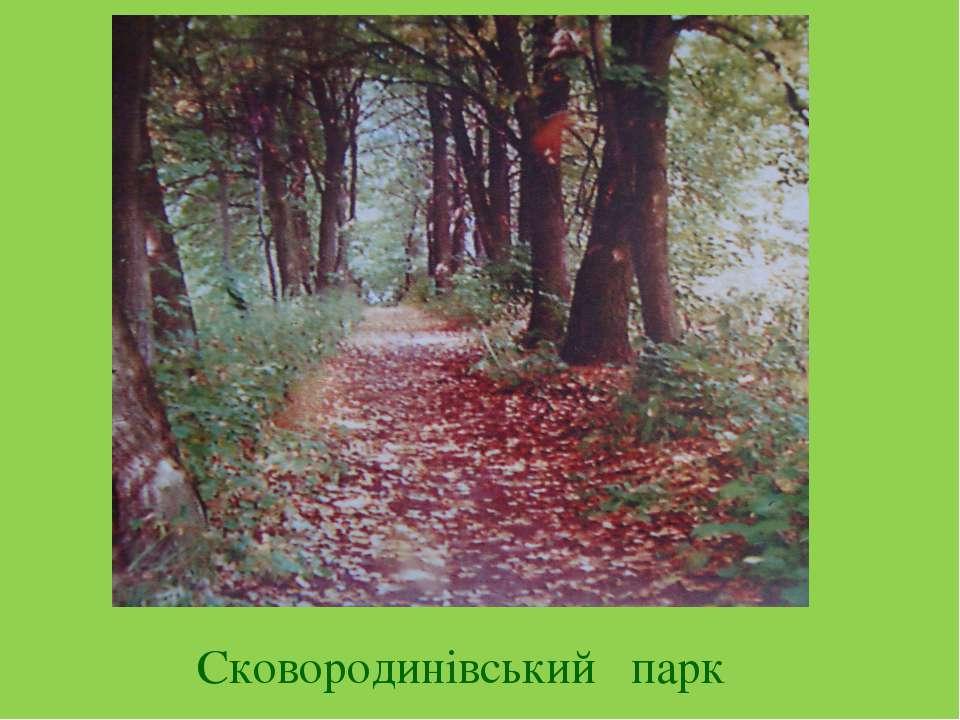 Сковородинівський парк