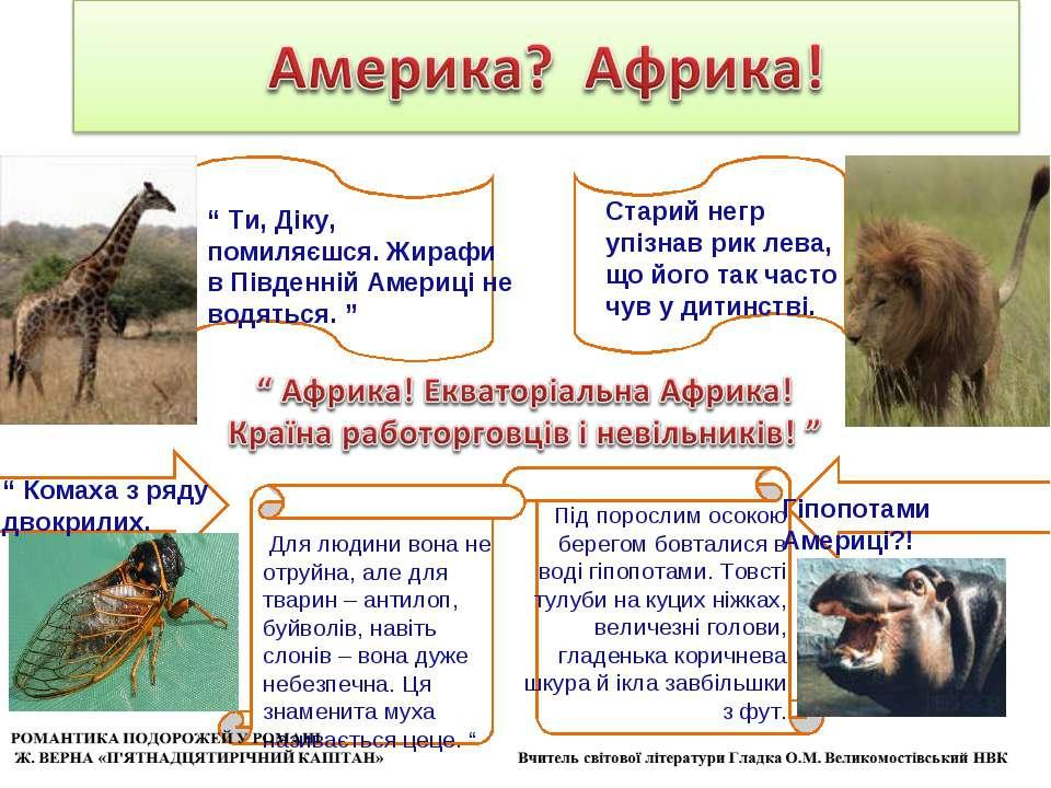 Для людини вона не отруйна, але для тварин – антилоп, буйволів, навіть слонів...