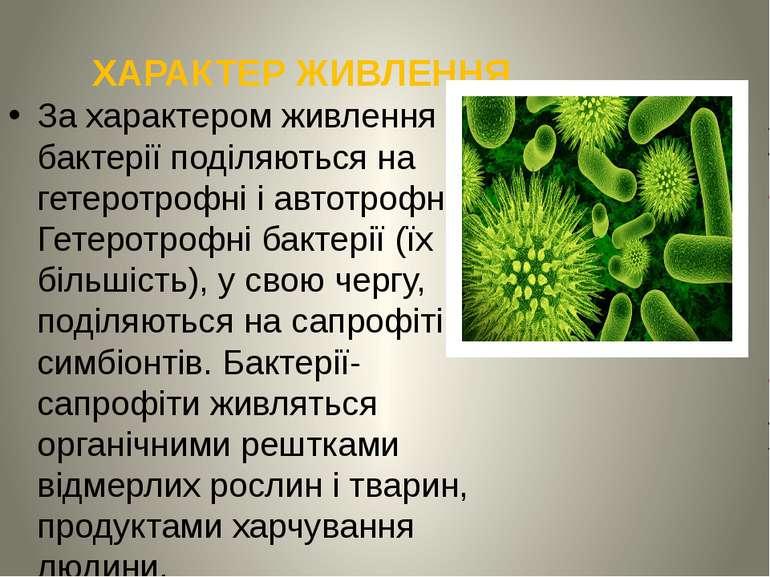 ХАРАКТЕР ЖИВЛЕННЯ За характером живлення бактерії поділяються на гетеротрофні...