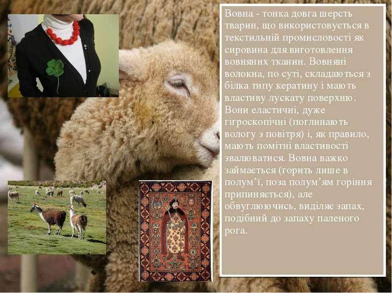 Вовна - тонка довга шерсть тварин, що використовується в текстильній промисло...