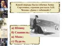 Какой породы была собачка Анны Сергеевны, героини рассказа А.П. Чехова «Дама ...