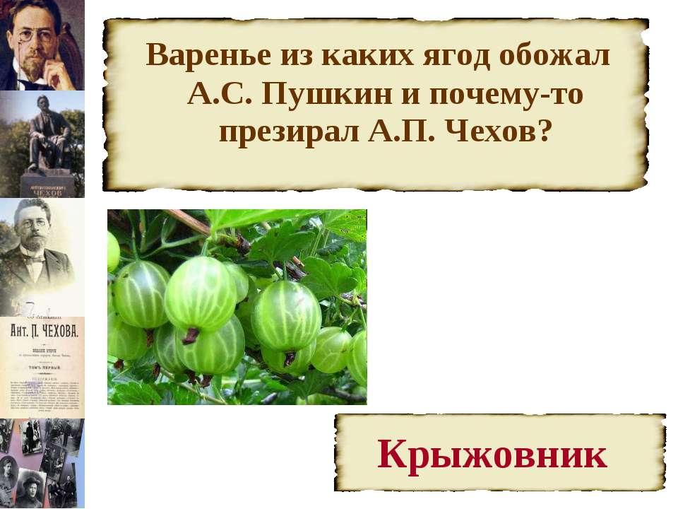 Варенье из каких ягод обожал А.С. Пушкин и почему-то презирал А.П. Чехов?