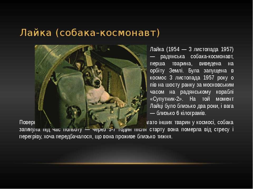 Лайка (собака-космонавт) Лайка (1954 — 3 листопада 1957) — радянська собака-к...